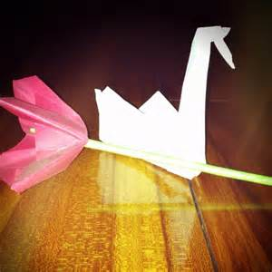origami prison origami flower and swan from prison prison