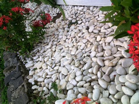 white garden rocks amazing white rocks for landscaping porch and landscape