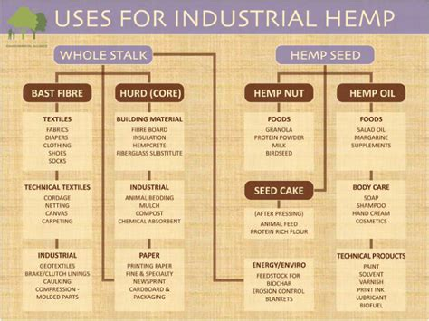 uses for 7 great uses for industrial hemp inside of you