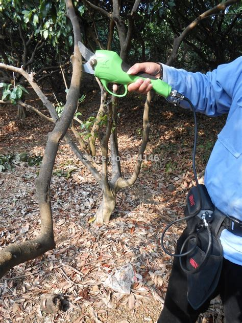 electric tree set electric tree pruner promotion shopping for