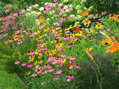Der Geheime Garten Zeichentrick by Butterfly Gardens Get Plants For Less