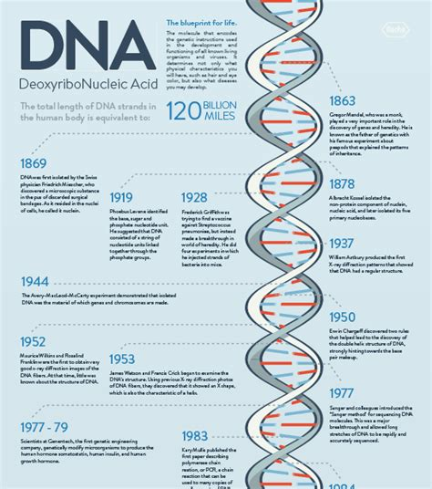 Blueprint Genetics download the dna history timeline roche life science