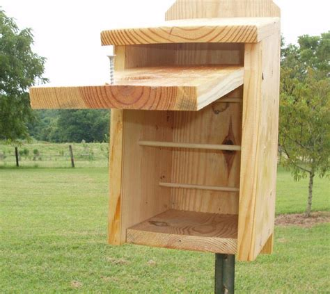 chickadee house plans chickadee bird houses plans birdcage design ideas