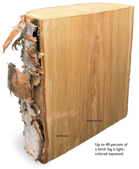 american woodworks the way wood works birch popular woodworking magazine