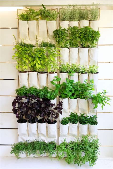 hanging wall garden 18 easy hanging gardens ideas for outdoors shelterness