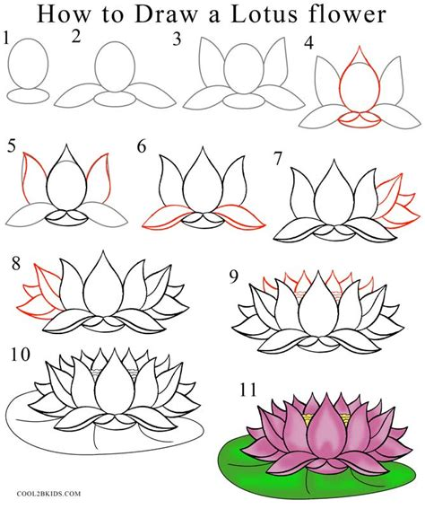 flowers step by step how to draw lotus flower step by step pictures cool2bkids