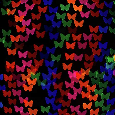 large multi colored lights multi colored butterfly shaped lights photograph by lotus
