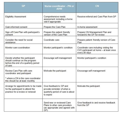 care management care plan templates bing images