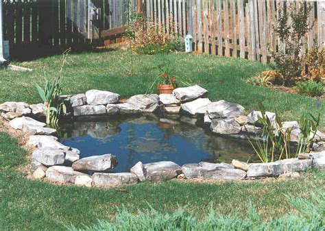 building backyard pond take the plunge tips for building a pond dr s country