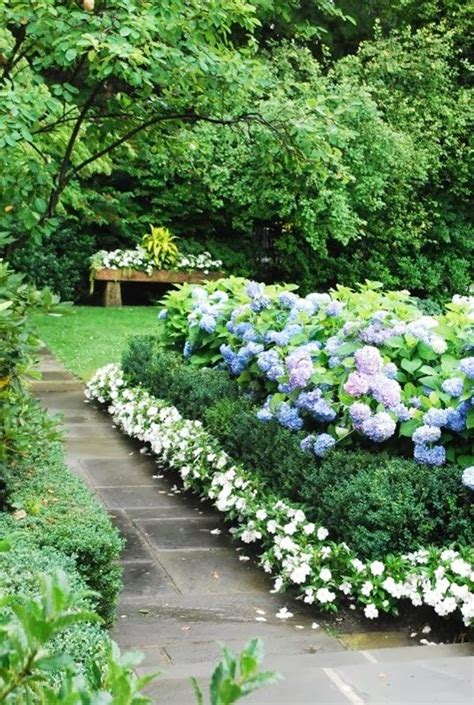 garden border plants flowers the most beautiful place in your garden border plants