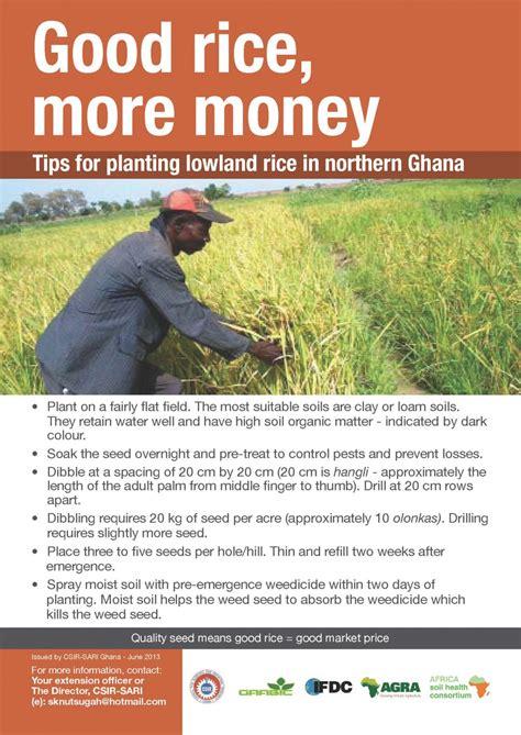 Harvesting and storing rice   poster   Cabi ASHC