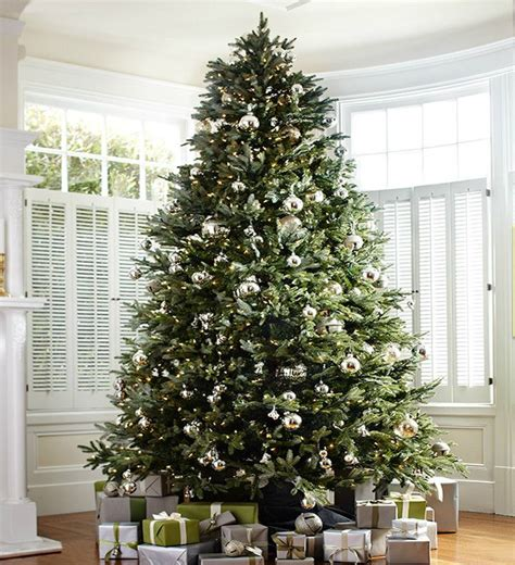 where to buy balsam hill trees how to choose the right tree height balsam hill