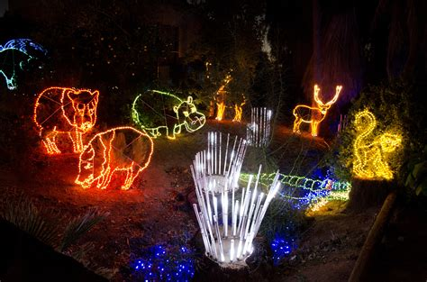 zoo lights ticket prices zoolights at the zoo top places to see in arizona