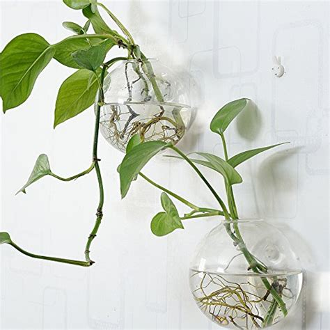 glass hanging planters pack of 6 glass planters wall hanging planters glass