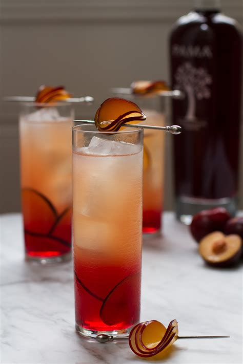 cocktail garnishes 6 cocktail garnishes for summer soirees