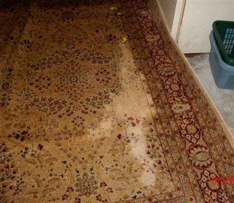 area rugs naples fl area rug cleaning naples fl wool and silk area rug