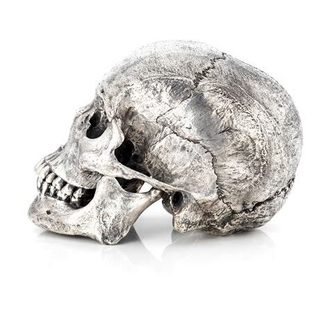 silver skull silver skull bronze skeleton sculpture