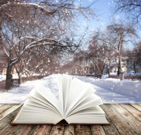 the snow picture book snow is falling books are calling