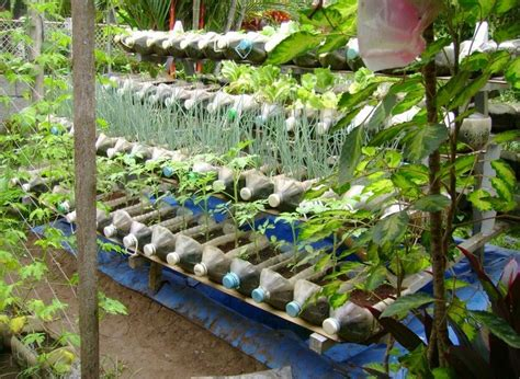 outdoor gardening ideas plastic container gardening ideas ideas home inspirations