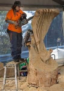 the australian woodworker the world s loudest form chainsaw sculptors turn