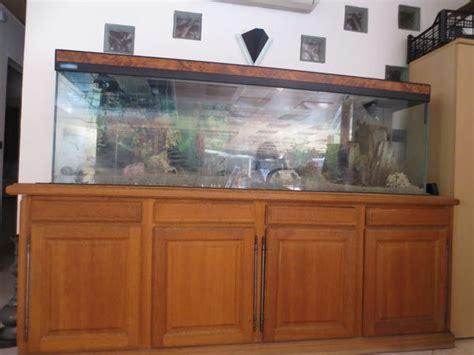 aquarium 600 litres clasf