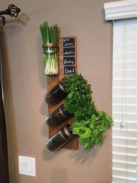 jar herb garden wall best 25 indoor vertical gardens ideas on wall