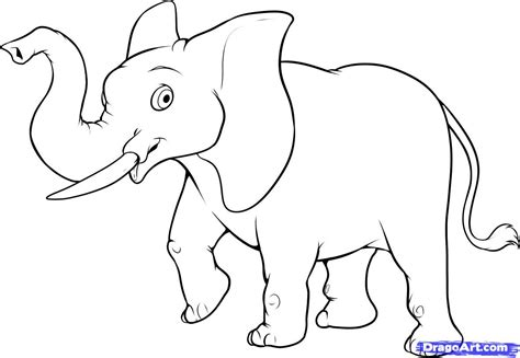 animals easy elephant drawing easy