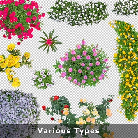 flower garden plans top view flowers cutout plan view images png for
