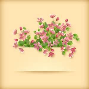 flowers for cards vector set of flower cards design 05 vector card