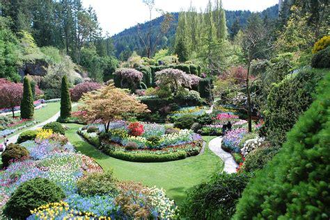 heavenly garden flowers garden of five senses vrinda eco garden
