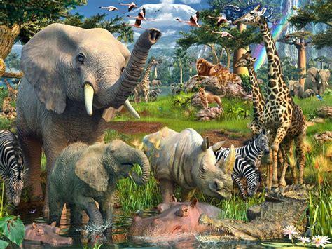 animal jungle jungle animals twenty two wallpapers jungle animals