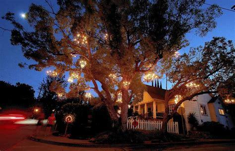 tree chandelier chandelier tree is a twinkling in silver lake