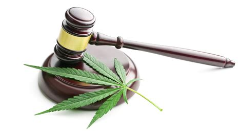is it in australia now medicinal marijuana is now in australia gizmodo