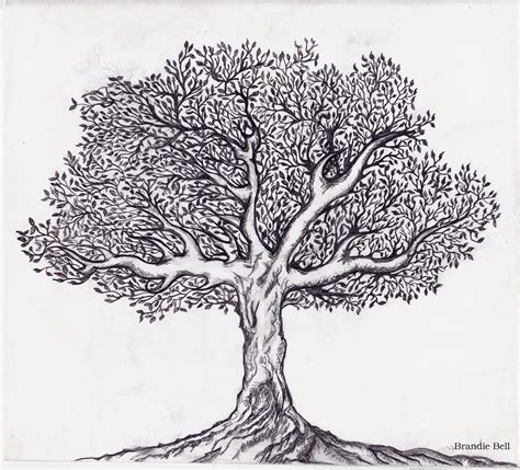 black and white tree adventures in journaling black and white tree sketch