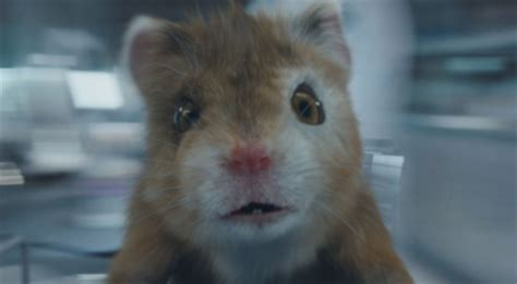Kia Soul Hamster Commerical by Kia Soul Turbo Commercial Song The Turbo Hamster