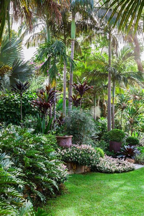 tropical front garden ideas 25 best ideas about tropical gardens on