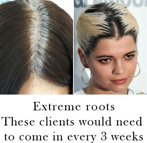 high lighted hair with gray roots how to blend grey roots with highlights dark brown hairs