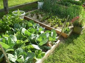 how to make home vegetable garden small backyard vegetable garden house design with diy wood