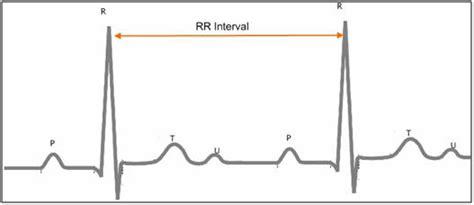 rate variability analyzer biomedical workbench 2013 help national instruments