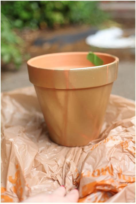 spray painting terracotta pots how to spray paint terra cotta pots run to radiance