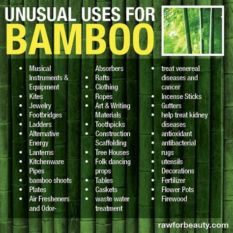 uses for bamboo bamboo uses f creative minds