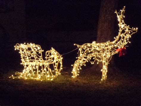 lighted reindeer decorations lights trees outdoor lights decoration