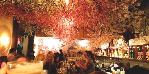 tree up dc drink to dc s cherry blossoms at this pop up bar vinepair