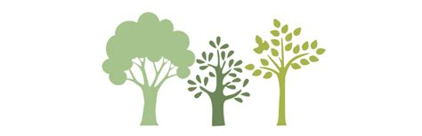 tree work conservation weeks trees for