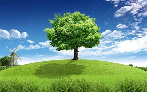 hd tree wallpaper tree grass windmill sky clouds wallpapers tree grass