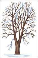 how to clean tree poda de arboles
