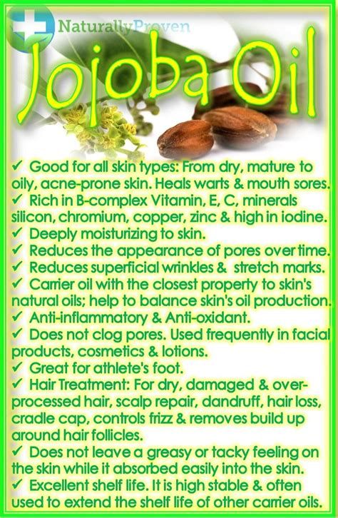 jojoba benefits 17 best ideas about jojoba on jojoba