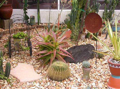 succulent garden ideas top 10 diy outdoor succulent garden ideas top inspired