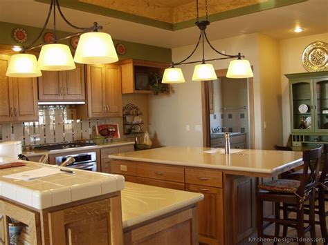 paint colors for kitchens with golden oak cabinets 22 pictures golden oak kitchen cabinets golden oak