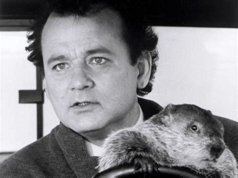 groundhog day expression groundhog alan related keywords suggestions groundhog